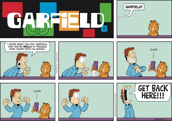 garfield 15/11/2020